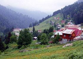 Arap yatırımcılar Trabzon yaylalarında
