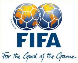 FİFA 2010 Dünya Kupası