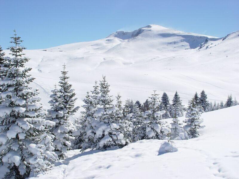 Yılbaşını karsız geçiren uludağ da kar kalınlığı 80