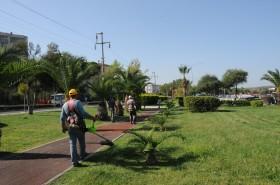aliaga-belediyesi-yesil