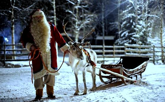 Santa Claus prepars his Reindeer and sle