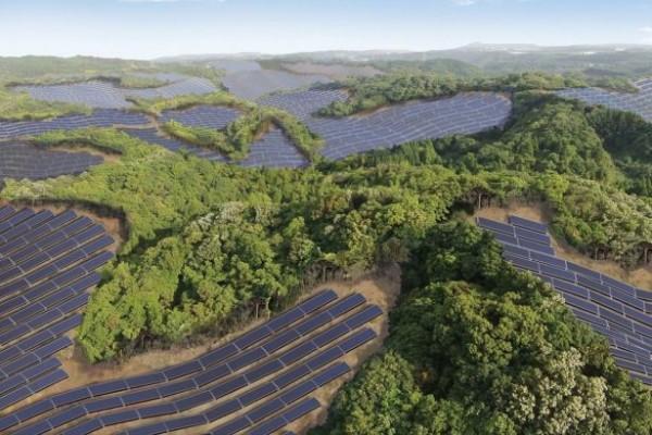Terk edilmiş golf sahalarından enerji üretiyorlar