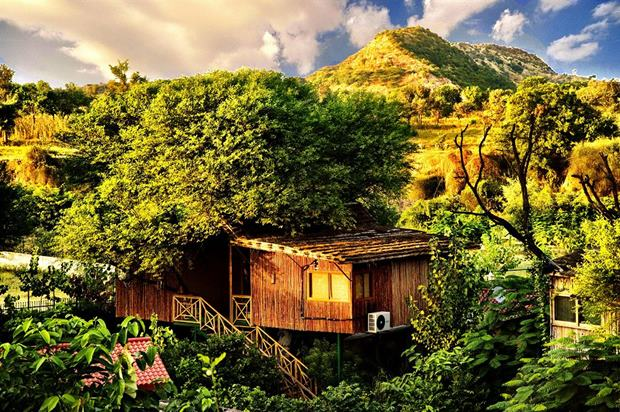 Hindistan ağaç ev