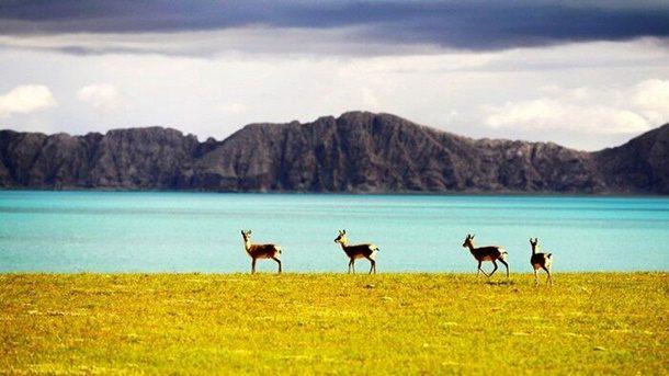 Çin'den 2 Dünya Mirası Adayı Daha!