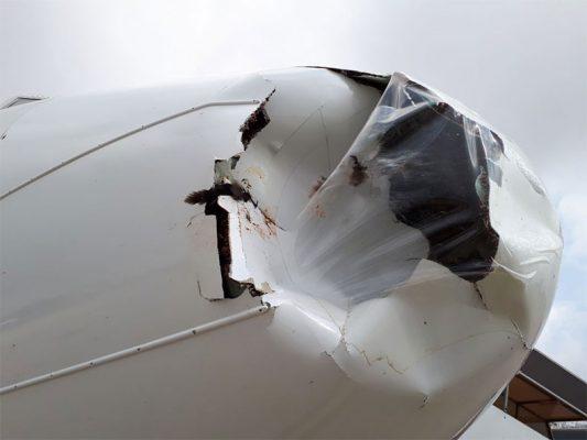 British Airways'in yolcu uçağına havada kaz çarptı