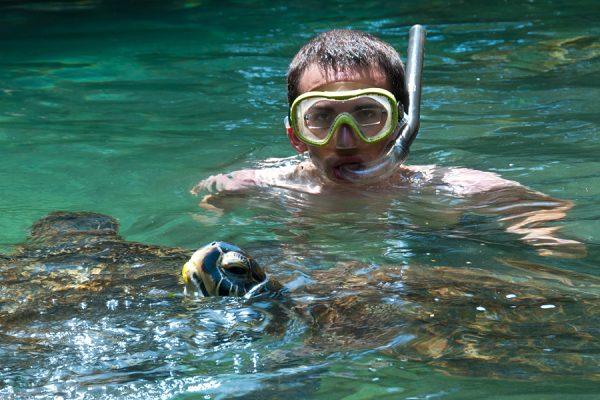 Mnarani turtles zanzibar