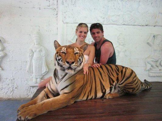 Tayland Koh Samui Kaplan hayvanat bahçesi