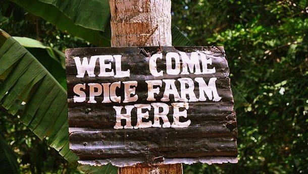 zanzibar-spice-farm