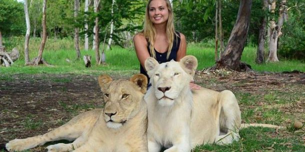Mauritiusta safari yapıp hayvanları sevebilirsiniz - safari