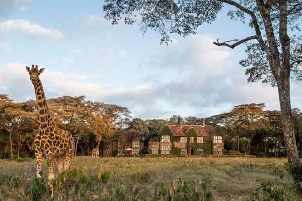 Nairobi Kenya Giraffe Manor balayı tatili oteli