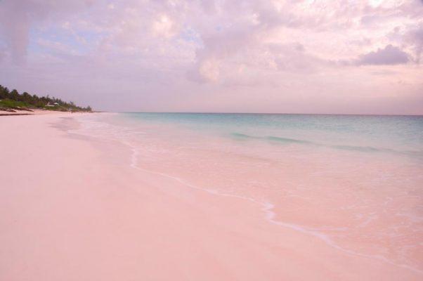 İnstagram'a göre Dünyanın En İyi 10 Plajı Pink Sands  Bahamalar