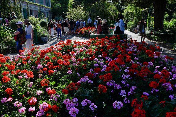 Fransız ressam Claude Monet ilham bahçesi