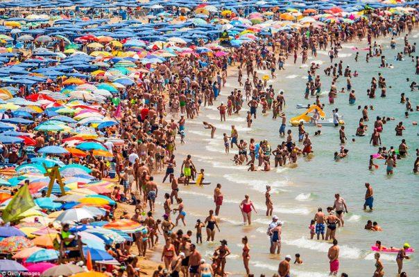 Firuz Bağlıkaya: Kurban Bayramı'nda 1.5 milyon kişi tatile çıkacak!
