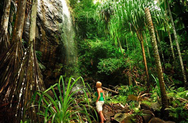 Vallee de Mai Ulusal Parkı, Praslin