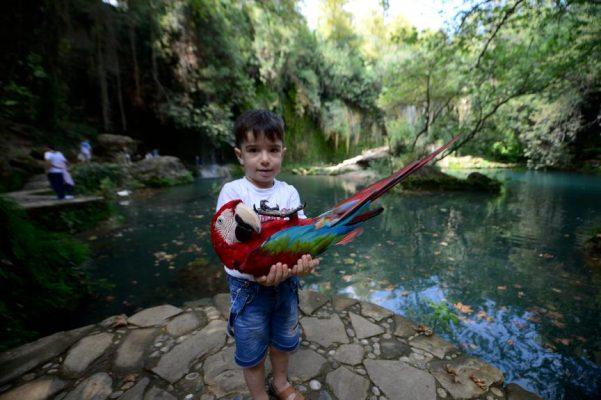 Kurşunlu Şelalesi turistleri büyülüyor
