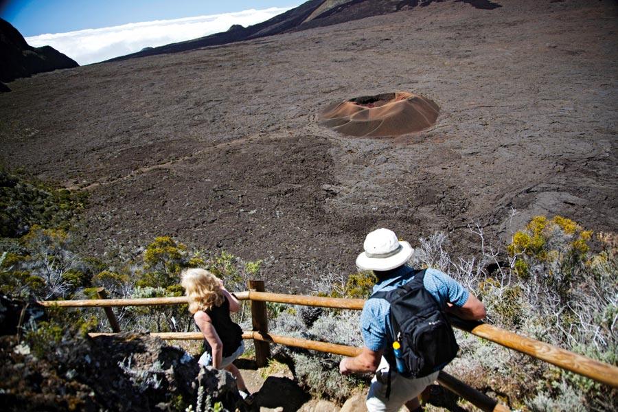 Reunion Adası'ndaki Vanilya Ağaçlarının Arasında Yürüyüş Yapın