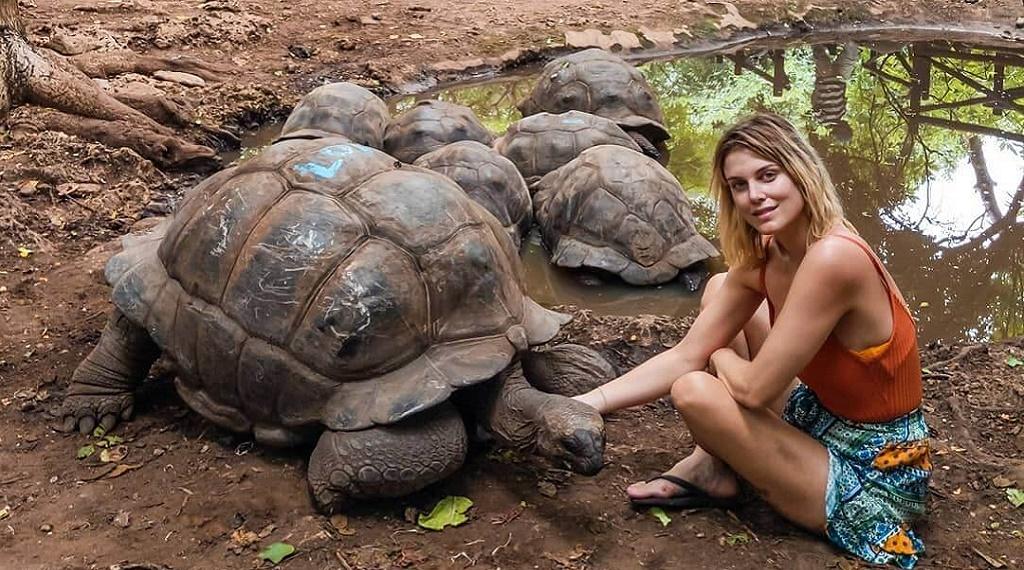 Ashley Zanzibar'da 107 yaşındaki dev kaplumbağa ile tanıştı