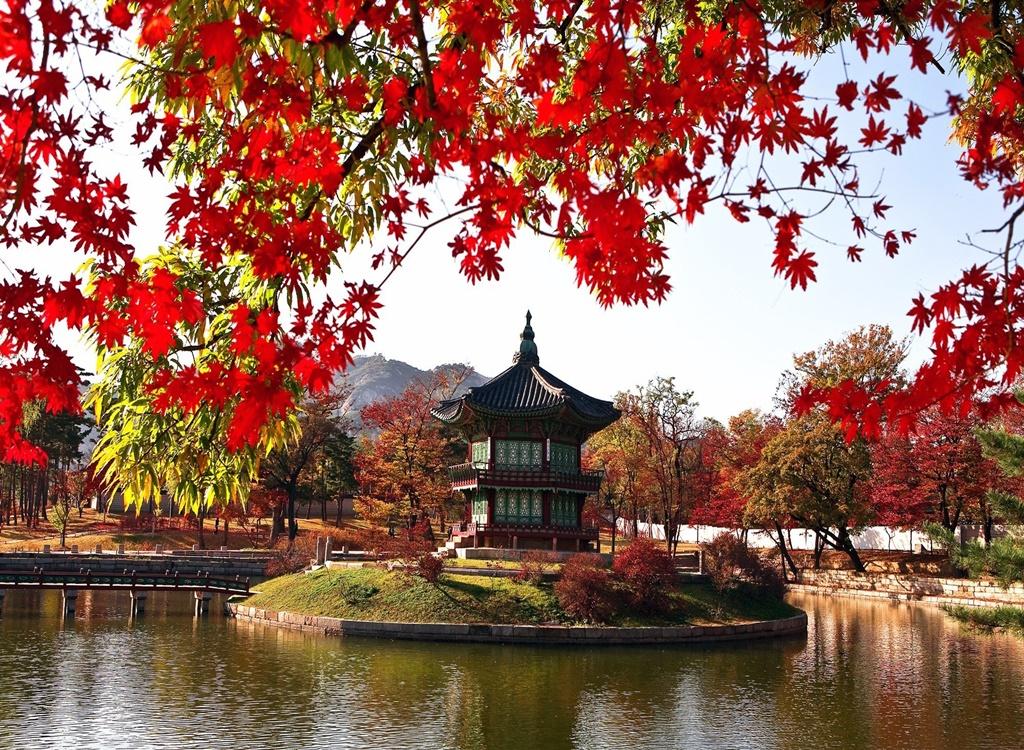 Güney Kore'de Sonbahar