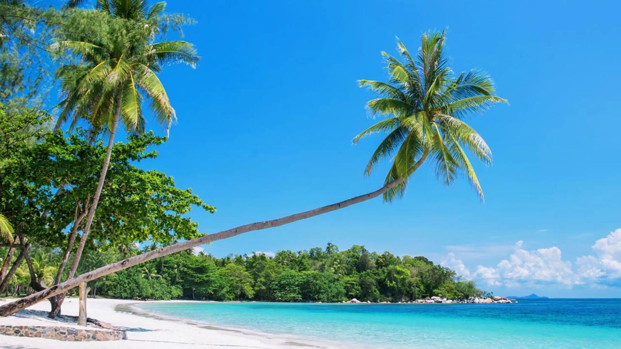 Endonezya Plajları: Trikora